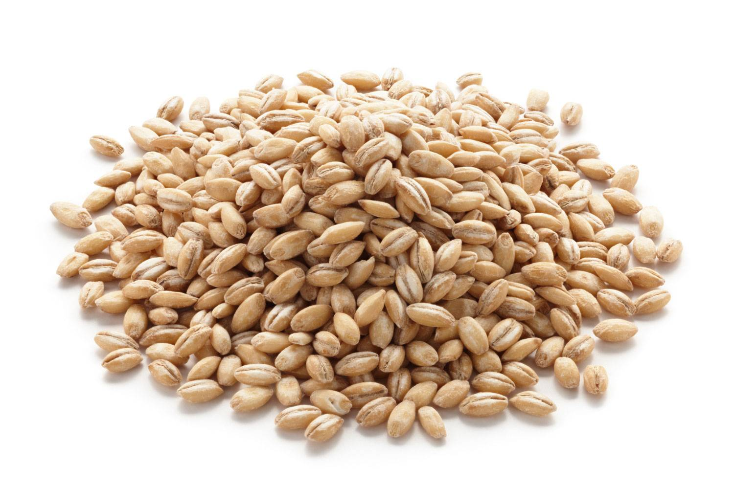 Barley from Ukraine