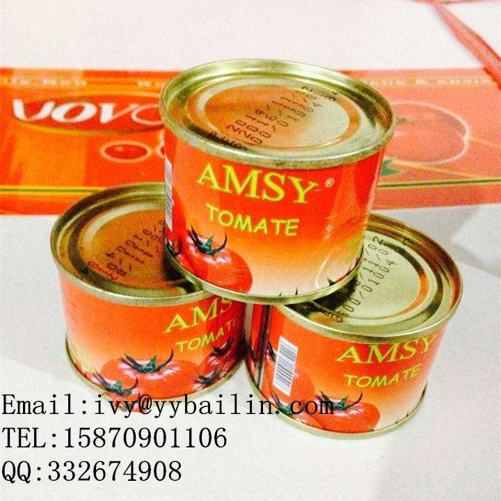 Hot Sell Canned Tomato Paste 70g - 3000g, Regular or easy open lid, and normal open lid