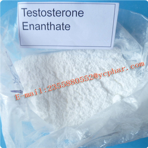 Testosterone EnanthateSteroids Hormone for Bodybuilding Testosterone Enanthate