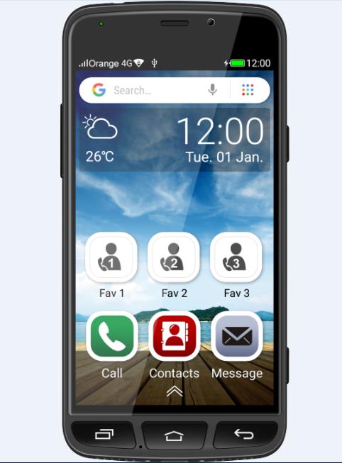 Smart Senior phone BS500
