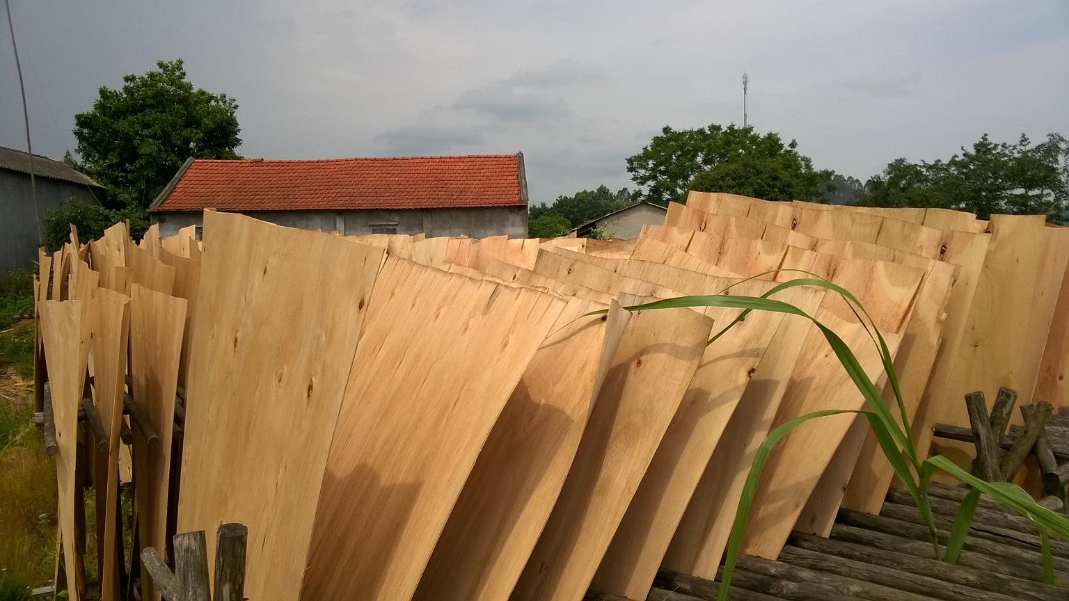 1.7&2.0mm Eucalyptus Core Veneer