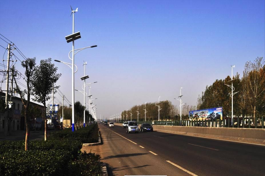 HOT SELL 50W LED Wind Solar street light