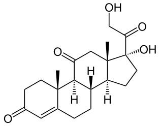 Cortisone CAS 53-06-5