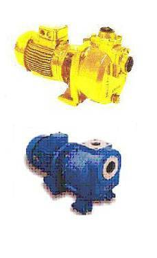 CA - SERIES PUMPS SELF PRIMED CENTRIFUGAL PUMPS - Azcue Pumps USA, Inc