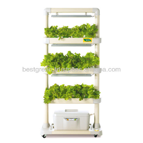 LED Hydroponic Cultivator