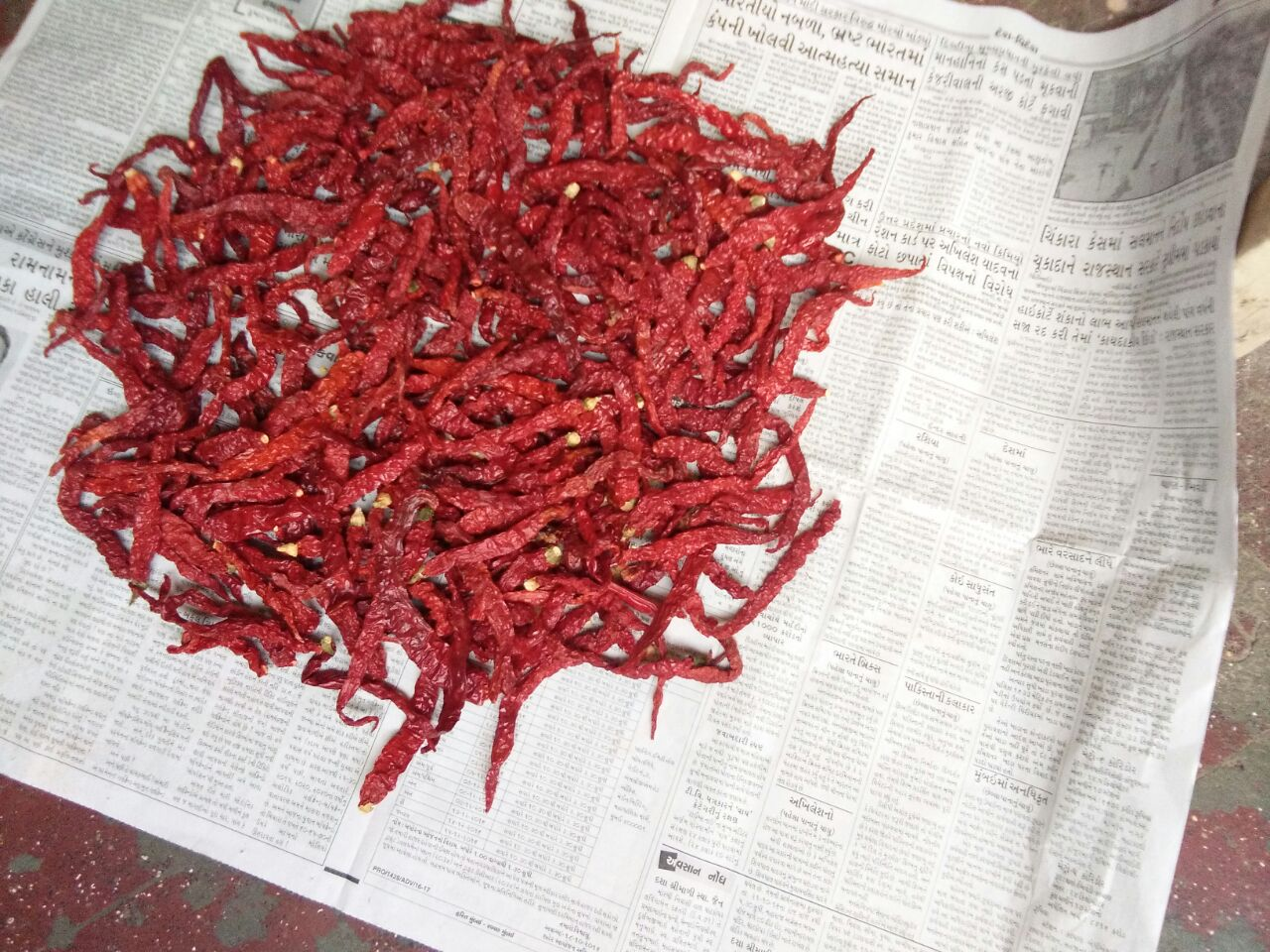 Byadigi chillies