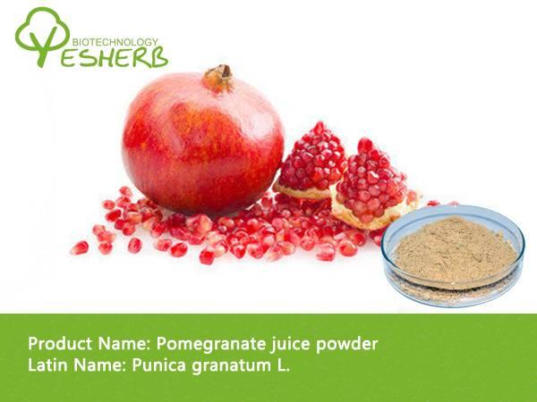 free sample organic Pomegranate extract