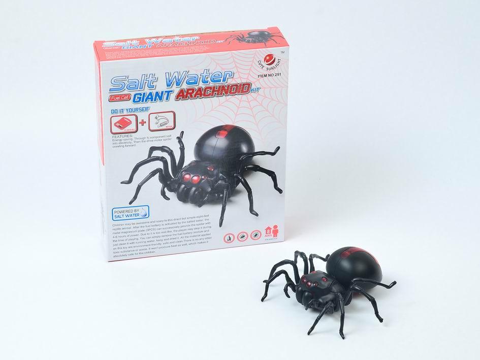 DIY Salt Water Spider