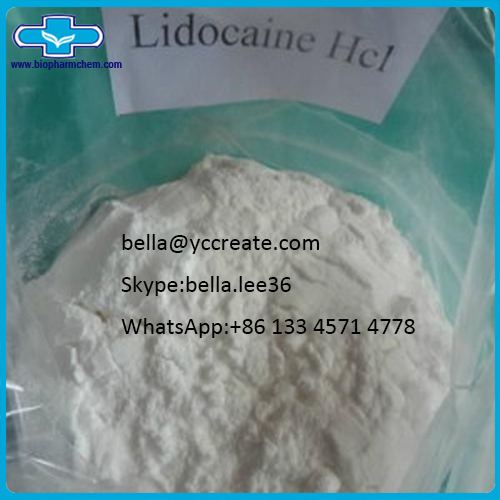 Paine Killer Drug Lidocaine Hydrochloride Lidocaine HCl