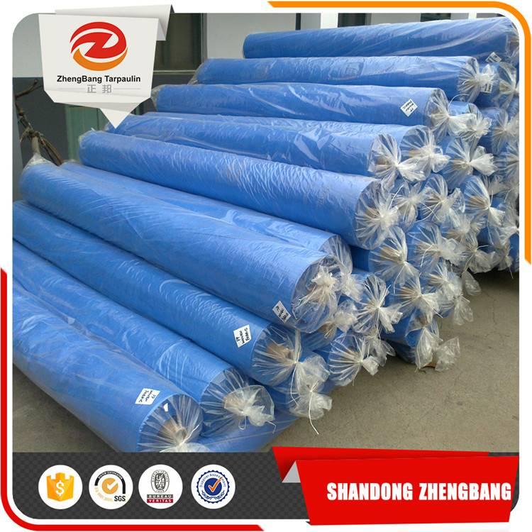 PE tarpaulin plastic sheet with all specifications