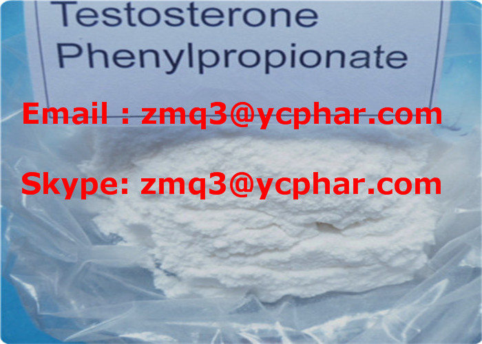 Testosterone Phenylpropionate for Lean Muscle Raw Steroid Powder