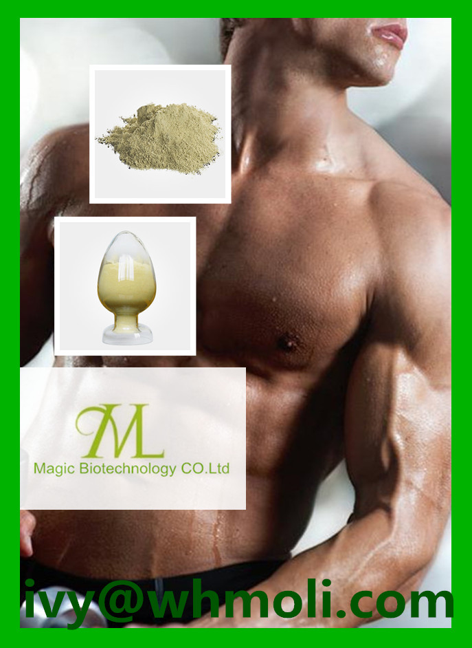 Quality Guaranteed Steroid Methyltrienolone for Muscle Building