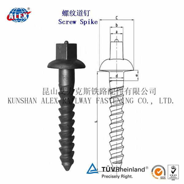 Rail screw spike for fixing in rail wooden or concrete sleepers