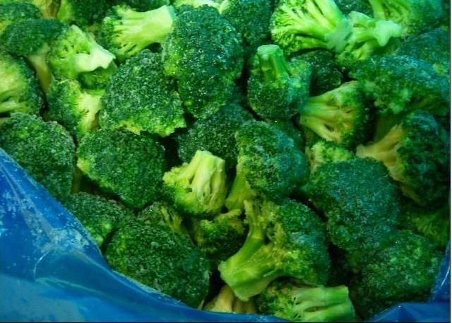 hot selling frozen broccoli, shandong frozen broccoli, IQF frozen broccoli