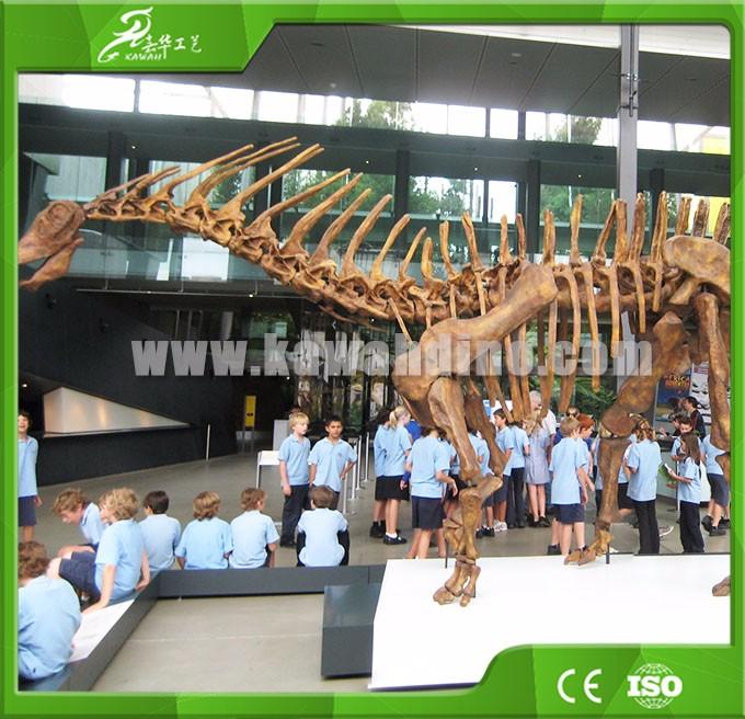 KAWAH Museum Artificial Educational Dinosaur Skeletons For Kids