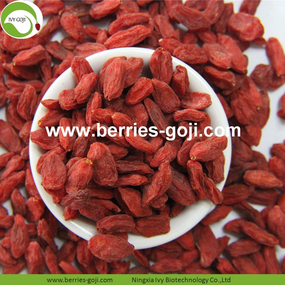 Factory Supply Hot Sale Dried Himalayan Wolfberry