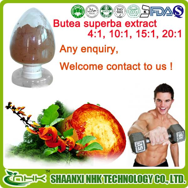 China supplier Natural Plant Extract, butea superba extract for men