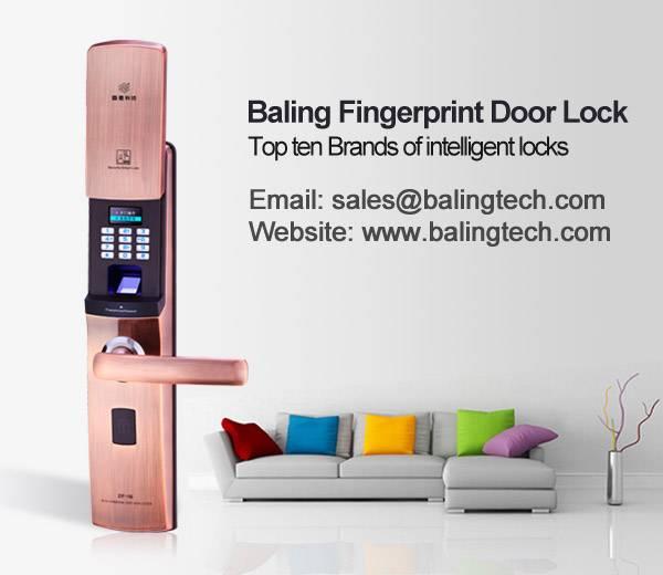 intelligent door lock factory fingerprint keypad door lock brand Euro Standard Lock vendor
