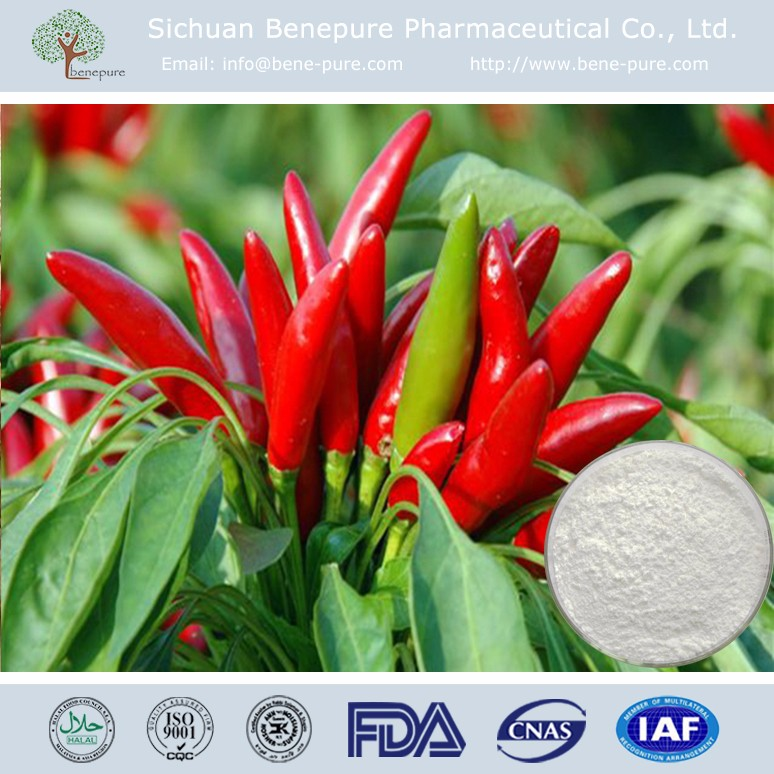 Capsaicin Red Chilli Capsicum extract 98% axsain zostrix Capsaicinoids for antiphlogosis Painkiller,