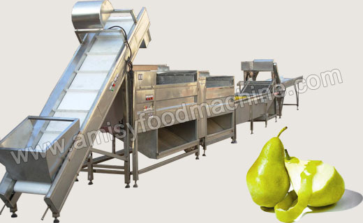Fruit & Vegetable Washing and Peeling Processing Line