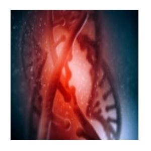 HOT-start PCR