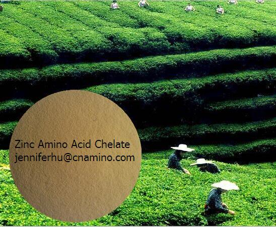 Zinc Amino Acid chelation Fertilizer