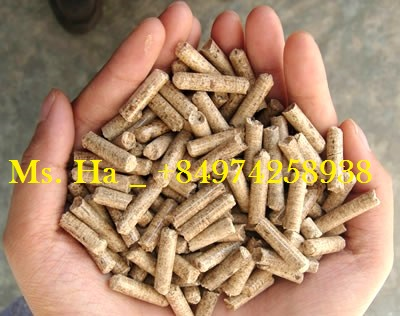 Wood Pellets 6mm of Vietnam For Power Plant