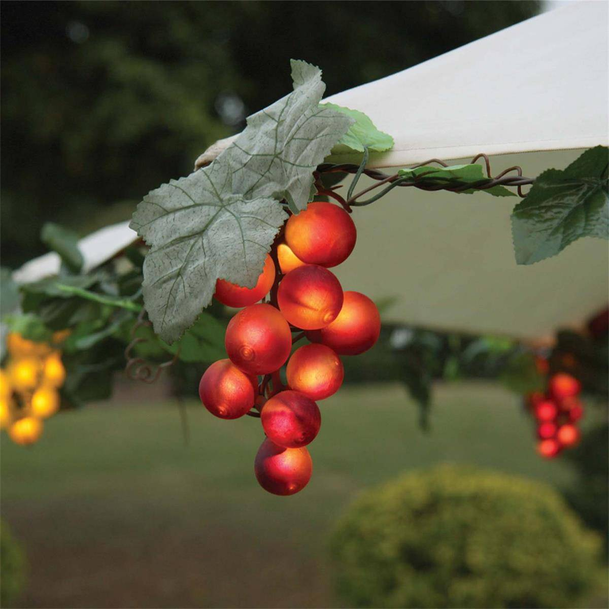 Umbrella Grape Lights KF84007