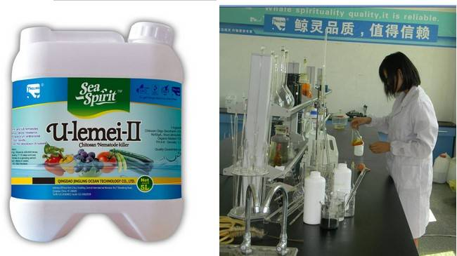 High quality Liquid chitosan agricultural nematocide/nemacide