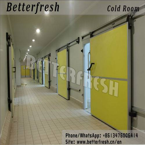 Dongguan Betterfresh refrigeration preservation Seed Storage ( Low Humidity Cold Store)Cold room