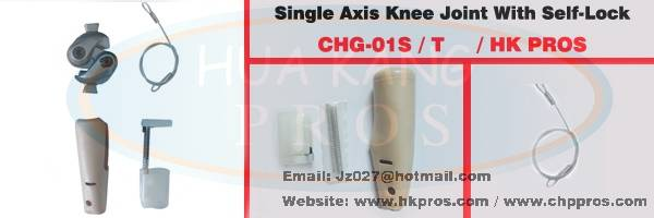 Single Axis Knee Joint with selflock