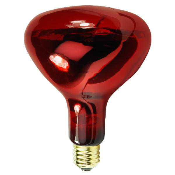 R40/ R125 Infrared Lamp