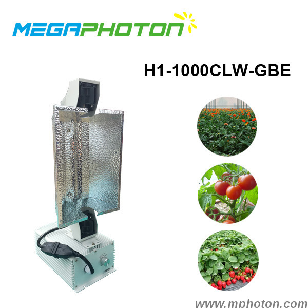 Megaphoton 1000W HPS or MH Lamp dimmable horticultural grow lights for greenhouse hydroponics