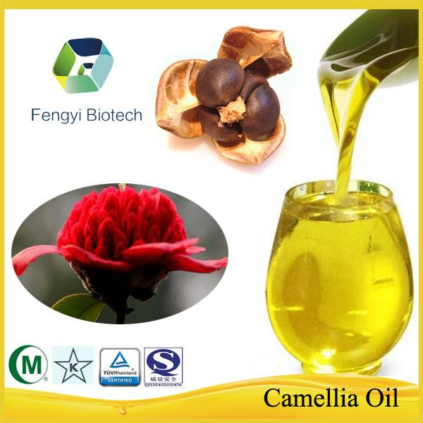 Cold Pressed Natural Organic Pure Camellia Seed Oil