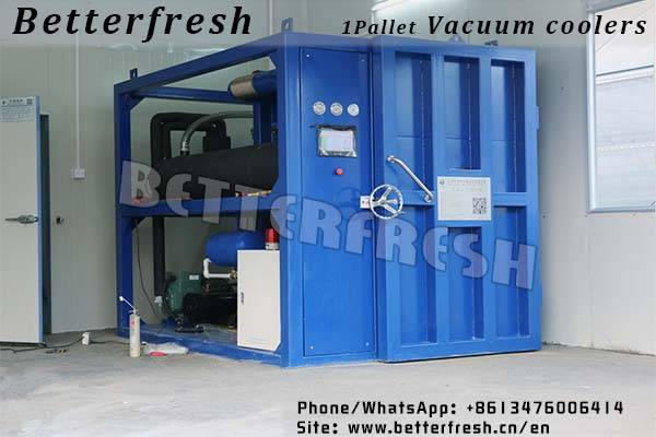 Dongguan Betterfresh refrigeration preservation pre coolers vacuum coolers for vegetables Bread Lett