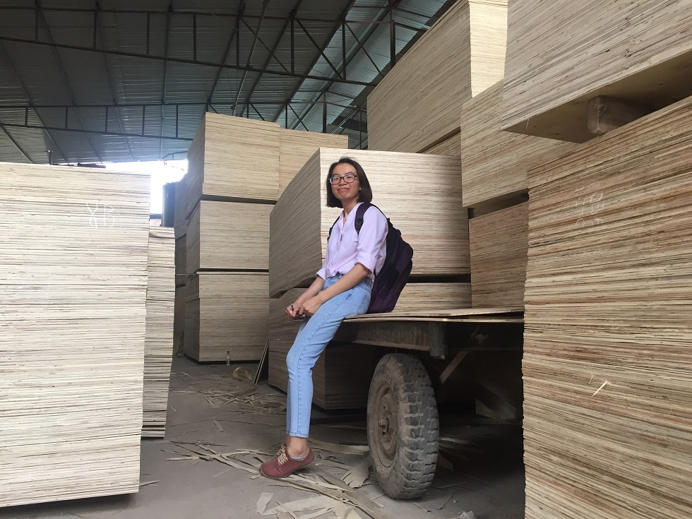 PLYWOOD FOR PACKING MATERIAL