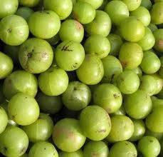amla seed oil