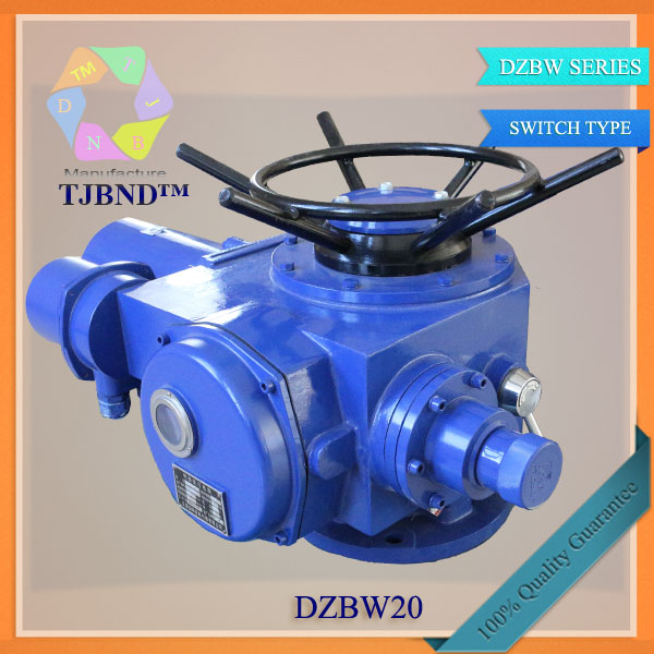 DZW series normal type electric actuator