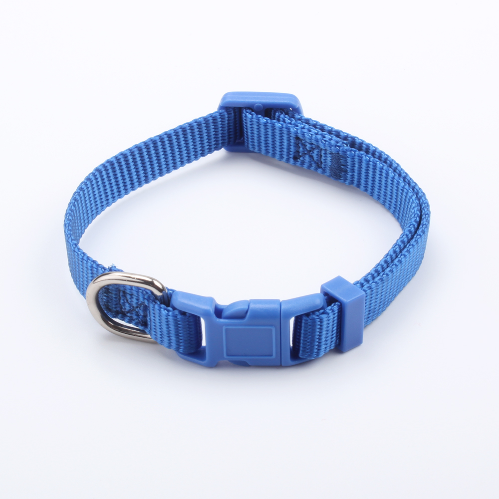 2018 New Design Durable Wholesale Solid Color Nylon Dog Collar
