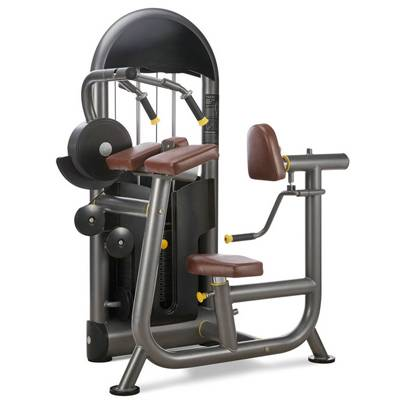 Triceps Extension gym equipment / fitness equipment