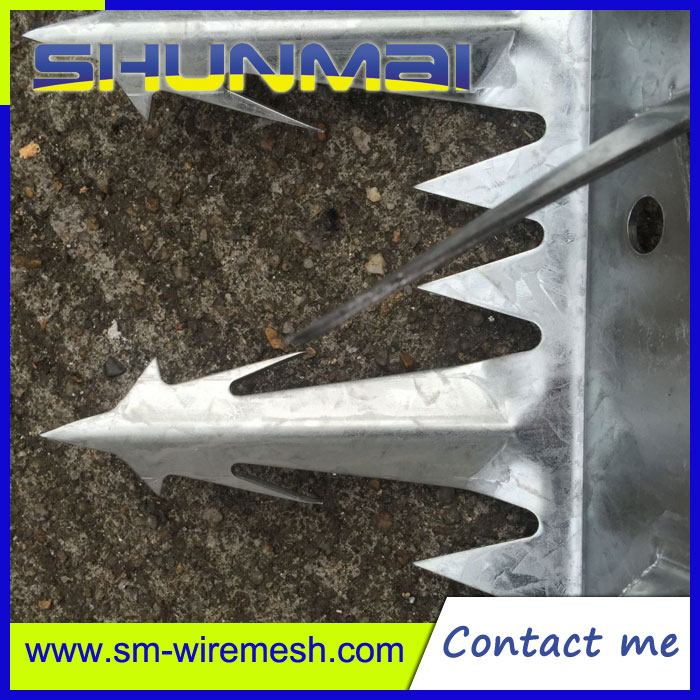 High Quality Anti Climb Thorn,Wall Spike Nail,Razor Barbed Wire Security Fence