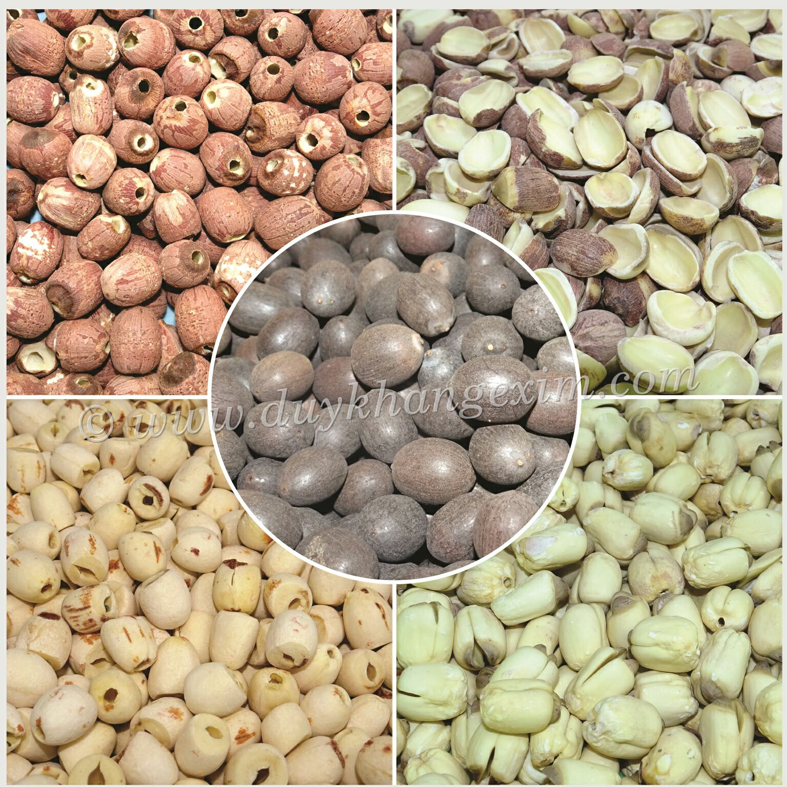 OFFER ALL TYPES OF DRIED LOTUS SEEDS