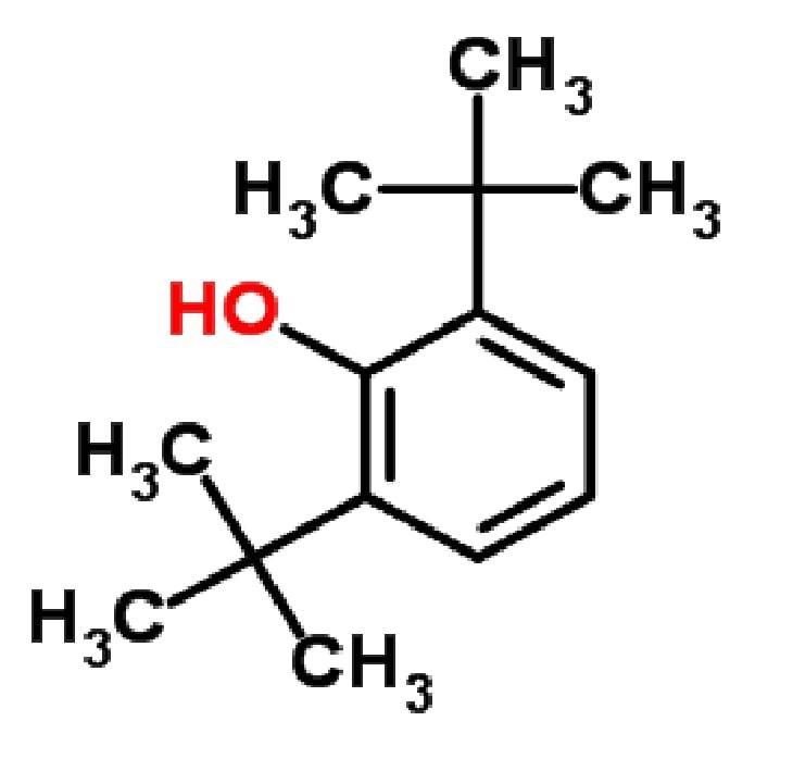 2,4 Di Tert Butylphenol (2,4-DTBP)