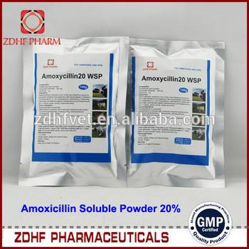 Veterinary antibiotic drugs amoxicilline soluble powder for chickens