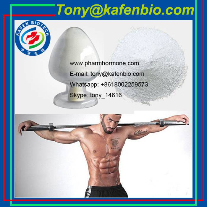 Anabolic Steroids Powder CAS 7207-92-3 Nandrolone Propionate for Muscle Growth