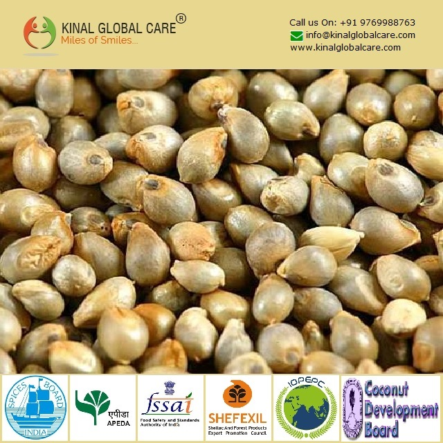 Best Quality Indian Green Millet