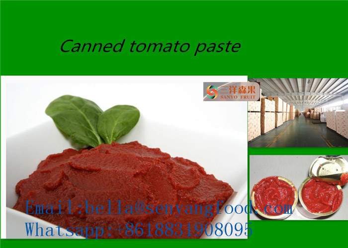 Hot and sweet tomato paste of brix 28-30% with excellent taste from China