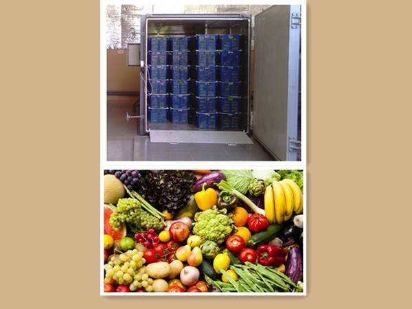rapid cooling vegetable vacuul cooling system