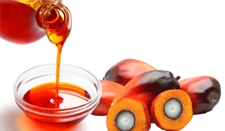 100% PURE RBD CRUDE AND REFINED PALM OIL