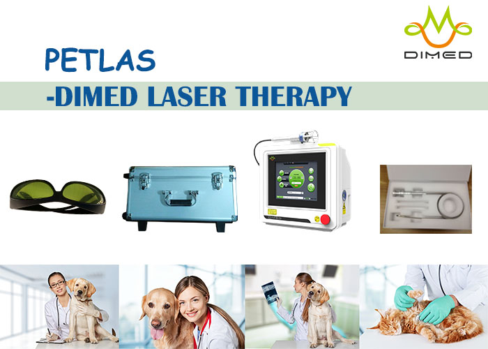 PETLAS Laser Therapy- The Absolute Leader in the Next Generation of Class IV Therapy Lasers